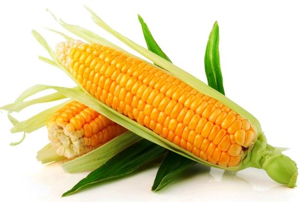 jornadas gastronomicas del maiz de llanes en asador riegu
